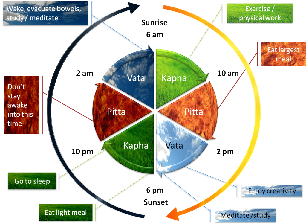 Daily dosha timings and actions