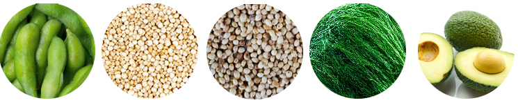 complete plant proteins