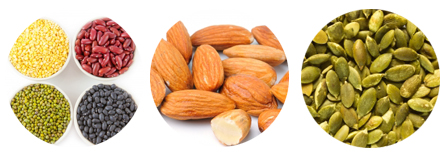 legumes nuts and seeds