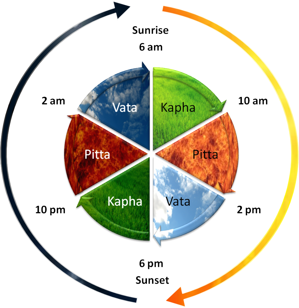 Daily dosha timings