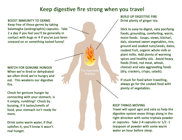 travel digestive fire