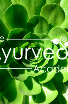 The Ayurveda Academy
